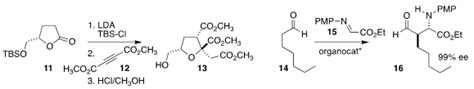 Arrays of Stereogenic Centers: The Tu Synthesis of