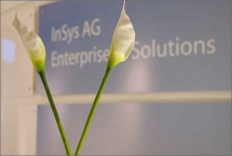 InSys AG | IT-Solutions